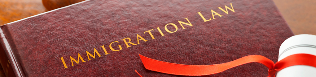 Book with title: Immigration Law
